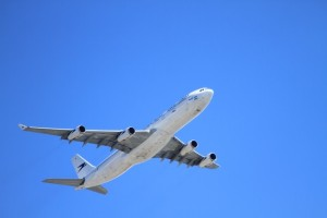 Flights to Jodhpur